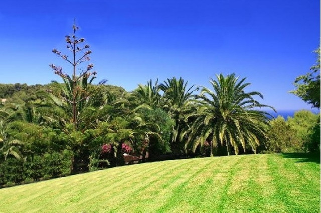 The gorgeous garden with great green zones